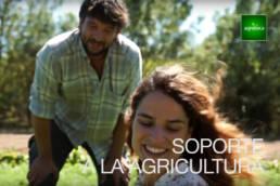 Creativity & Branding Agroboca
